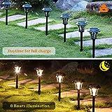 MAGGIFT 25 Lumen Solar Powered Pathway