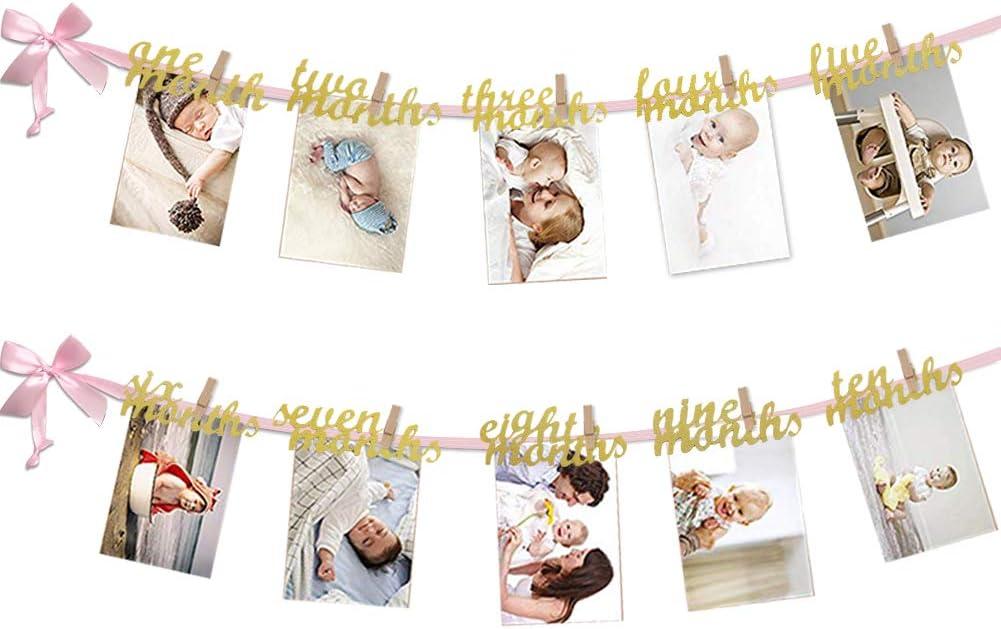 12 Month Milestone Photo Banner 1st Birthday Rainmae Wild One Banner First Birthday Photo Banner Baby Monthly Photo Prop Baby Shower Birthday Party Supplies
