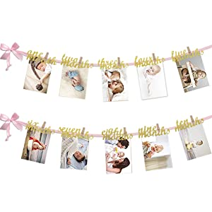 12 Month Photo Banner, First Birthday Decoration, Milestone Photo Banner for First Birthday Party, Great Baby Shower Gift (Pink and Gold)