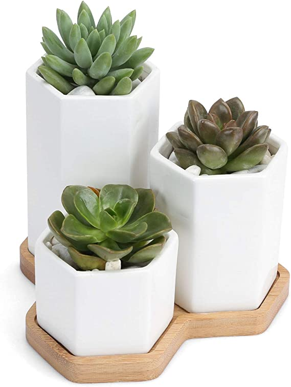 2.7inch Ceramic Succulent Planter with Square Design Succulent Pots with Bamboo Tray Small Cactus Plant Pot for Home, Garden, Office Decoration (Set of 3)