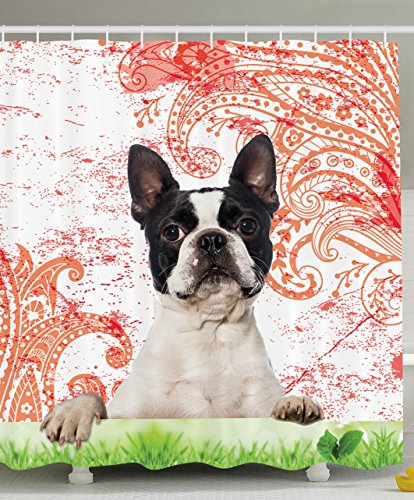 Ambesonne Purebred Cute Boston Terrier Artwork Posing on Grass Decorative Picture Design Black White Green and Red Print Pet Lover Owner Bathroom Decor Crimson Shower Curtain - Machine Washable - Boston Terrier Artwork