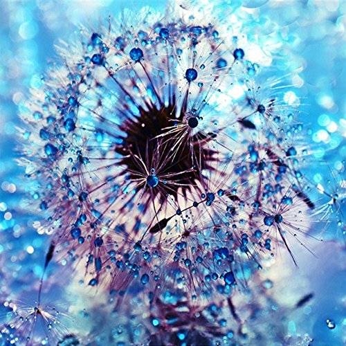 (Sttech1 5D DIY Blue Dandelion Diamond Painting, Full Diamond Embroidery Painting Wall Sticker for Wall Decor - Pure Yearning 30x30cm (Dandelion))