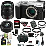 Panasonic Lumix DMC-GX8 Mirrorless Micro Four Thirds Digital Camera (Body Only, Silver) + 12-35mm f/2.8 Asph. Lens + 20mm f/1.7 II ASPH. Lens + Sony 128GB Memory Card + Rode VMGO On-Camera Microphone + Battery + Accessory Bundle