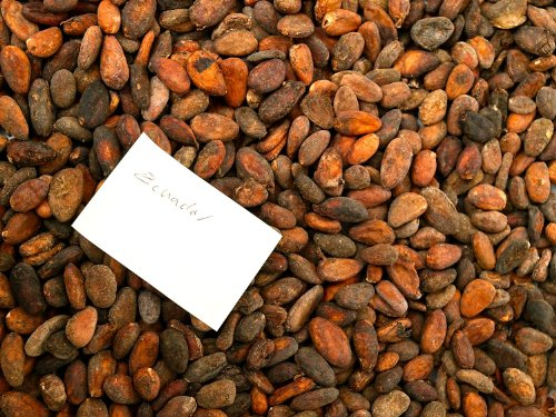 Rohe Kakaobohnen aus Ecuador (1000g)