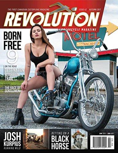 Harley Davidson Baggers - 2