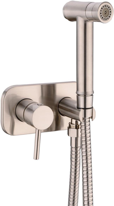 TRUSTMI Toilet Concealed Hot and Cold Bidet Spray Set,Brushed Nickel