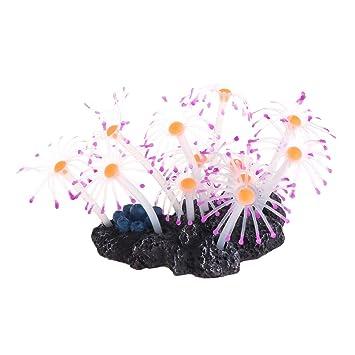 Daxibb Aquatic Coral Acuario pecera Decoración Brillante Artificial Resina Plantas de Silicona, Morado, 9×5×7 cm: Amazon.es: Hogar