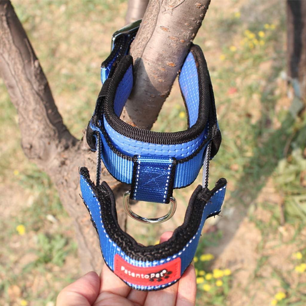 Koobysix Dog Supplies Hundehalsband mit integrierter Leine einziehbar mit Griff