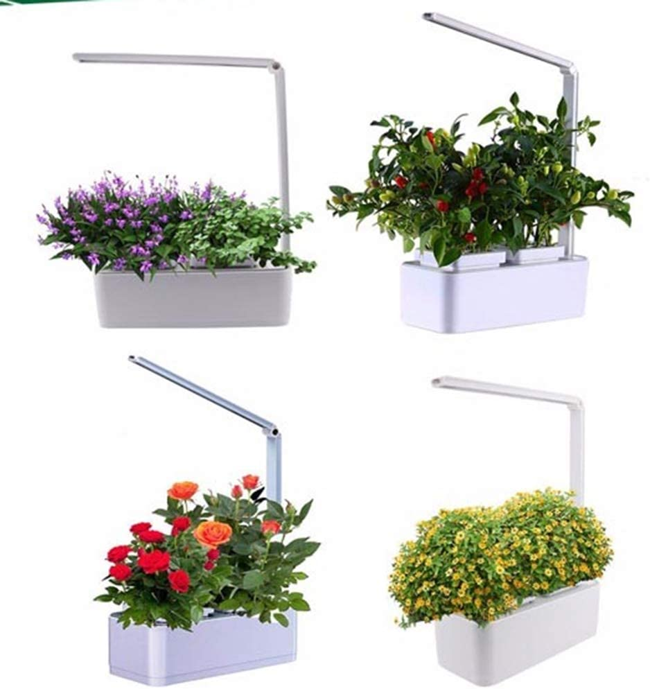 NINI Jardín Inteligente de Hierbas de Cultivo soilless hidropónico Inteligente Maceta absorción automática de Agua + lámpara de Mesa LED
