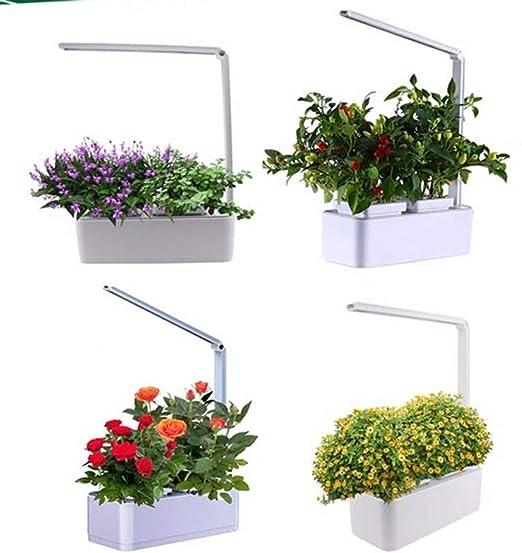 NINI Jardín Inteligente de Hierbas de Cultivo soilless hidropónico Inteligente Maceta absorción automática de Agua + lámpara de Mesa LED: Amazon.es: Hogar