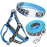 Dog Collar, Harness and Leash | Blue Leopard Design | Medium| Perfect Accessory for Walking Your Dog