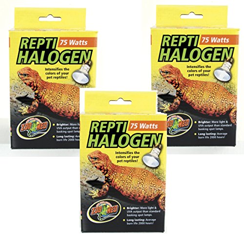 Zoo Med Repti Tuff Splashproof Halogen Lamps 75 Watts (3 Pack) by Zoo Med