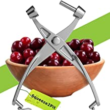 Cherry Pitter Olive