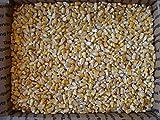 corn 50 lbs - 15 Lbs Iowa Country Corn 2017 crop
