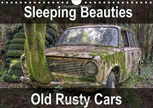 Sleeping Beauties Old Rusty Cars 2016: Old, rusty, abandoned classic cars (Calvendo Hobbies) PDF
