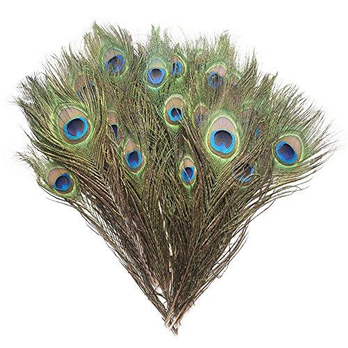 Piokio 200 pcs Natural Peacock Feathers Bulk 10