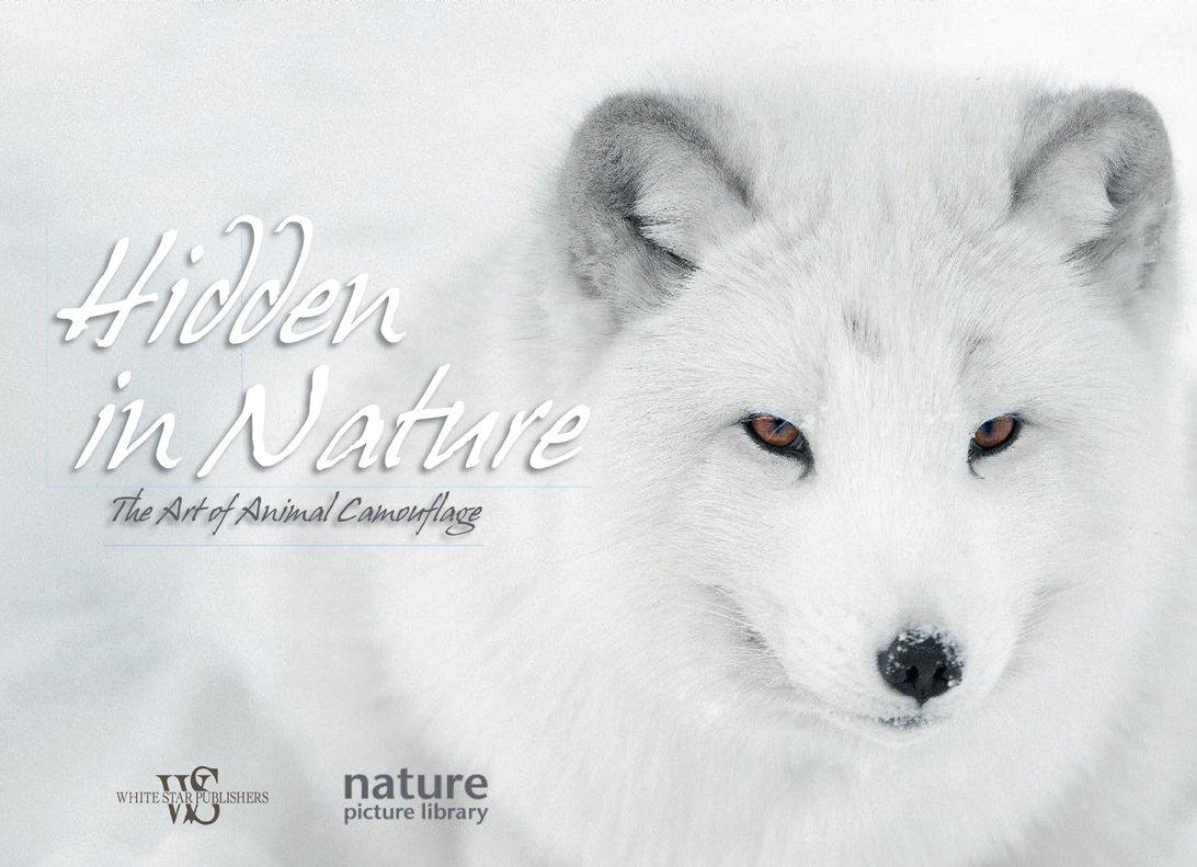 Download Hidden in Nature: The Art of Animal Camouflage ebook