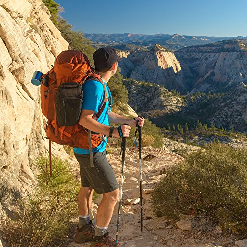 Tri Fold Alloy UL Trekking Poles / Sticks Folding, Collapsible, Adjustable, and Ultralight Perfect for Hiking, Walking, Backpacking and Snowshoeing