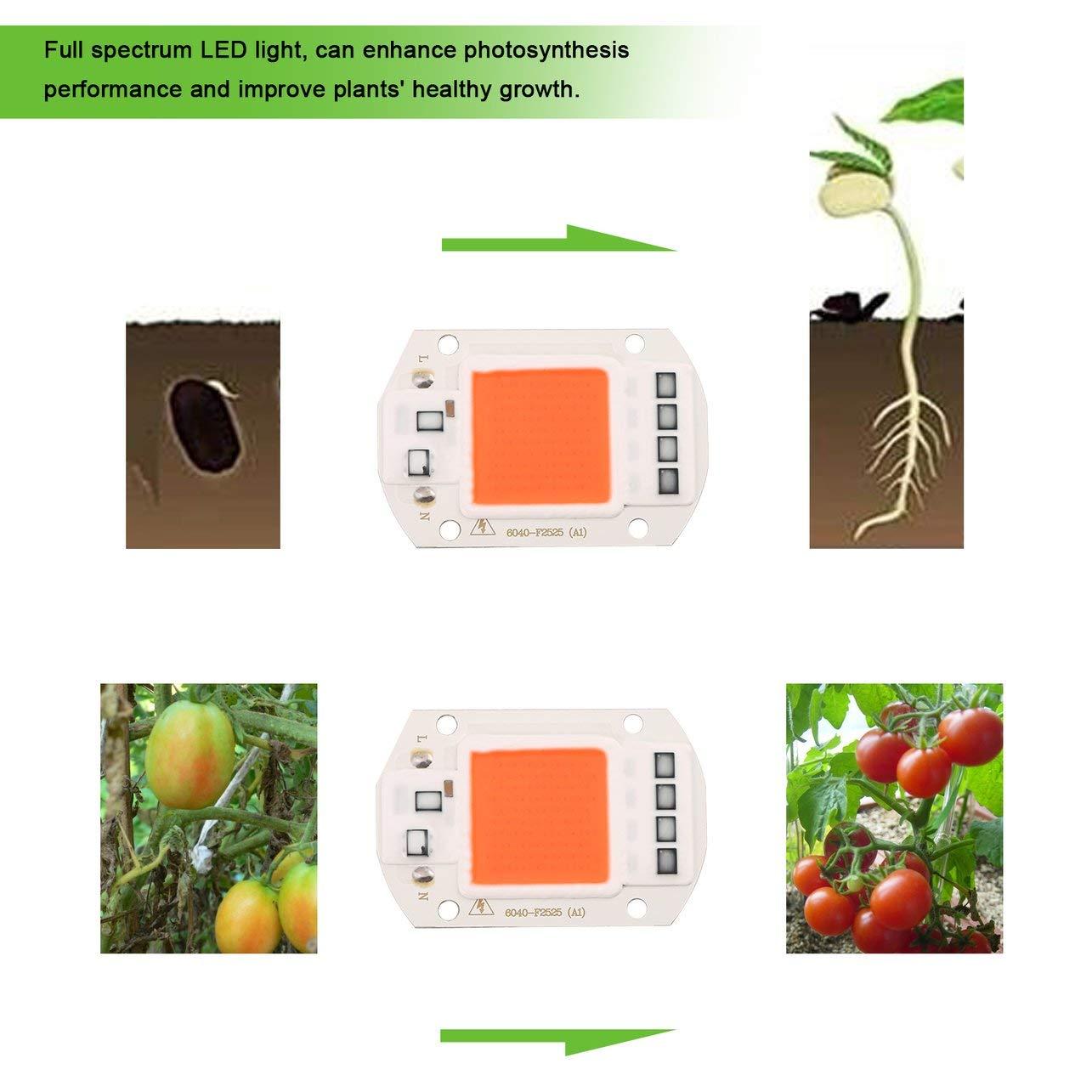 WOSOSYEYO 50W LED wachsen Licht volles Spektrum Led COB Zimmerpflanze wachsen Licht f/ür Gartengew/ächshaus Wasserkultur 380NM-840NM 50000H