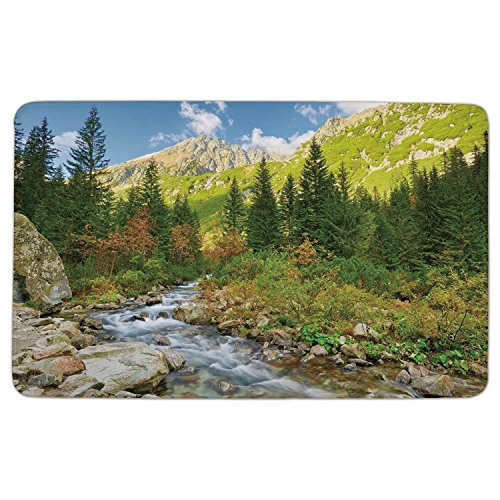 Flannel Microfiber Doormat Mat Rug Carpet,Outdoor,Roztoka-Stream-Tatra-National-Park-Carpathian-Mountains-Poland-Woods,Green-Light-Green-Tan.jpg,Non-slip Rubber Backing Soft Absorbent,for (Tatra Sink)