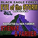 Black Eagle Force: Eye of the Storm Audiobook by Buck Stienke, Ken Farmer Narrated by Ken Farmer