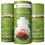 Teabloom Green Tea Flowers – Hand Tied Green Tea Leaves + Jasmine Blossoms Flowering Tea Creations – Blooming Tea Gift Set – 12-Pack, 36 Steeps, Makes 250 Cups