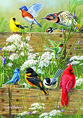 Buffalo Games Large Piece Family: Songbird Menagerie - 300 Piece Jigsaw Puzzle by Buffalo Games by Buffalo Games