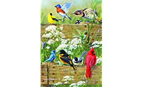 Buffalo Games - Hautman Brothers - Songbird Menagerie - 300 Large Piece Jigsaw Puzzle