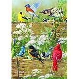 Buffalo Games Large Piece Family: Songbird
