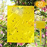 Package contains: 20 sheets 8x6 inch dual-sided yellow sticky traps 20 pieces twist ties 4 pieces yellow plastic holdersEasy to use: 1. Just remove the protective cover paper from the traps. 2. For trees or other large plants: Use the twist t...
