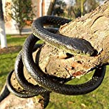 "53"" Rubber Lifelike SnakesSpecification:-Coiled up size:Approx 7"" in diameter;Total length:Approx 53""-If you don't watch it very carefully, the fake snake just look like the real one.-Perfect for halloween decoration, you can also use to scary your f..."