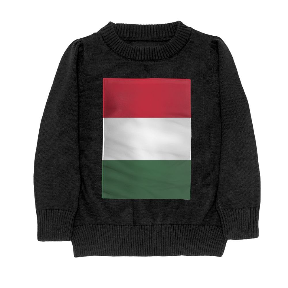 DTMN7 Flag Of Hungary Teens Sweater Long Sleeves Crew-Neck Youth Athletic Casual Tee Junior Boys