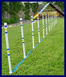 Amazon Com Dog Agility Stick In The Ground Outdoor Weave