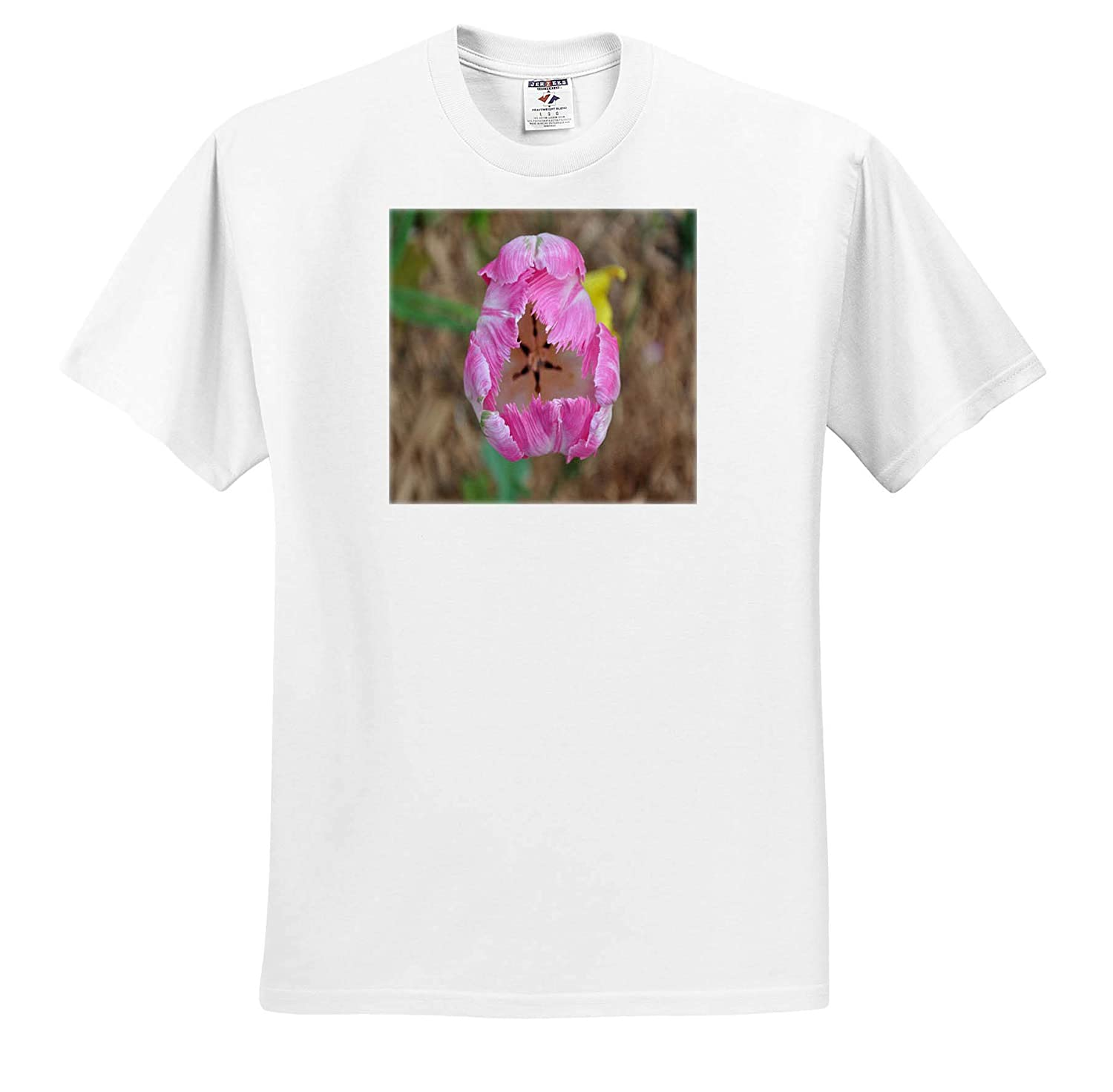 ts/_314272 Pink Parot Tulip in Bloom Adult T-Shirt XL Flowers 3dRose Dreamscapes by Leslie