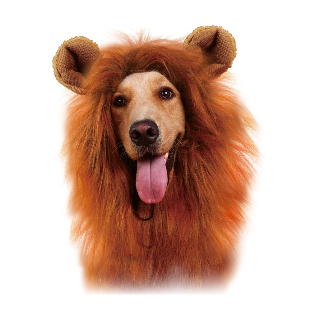 Lion Mane Dog Wig Costume for your Medium/Large Sized Dog - Soft Brown Fluffy Warm Polyester Wig, Pair Attached Ears, Friendly Lion Costumes for Pets, Party Lion Mask for Costume Contest