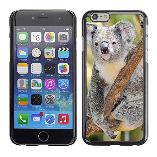 "Premio Sottile Slim Cassa Custodia Case Cover Shell // V00002818 koala australien // Apple iPhone 6 6S 6G 4.7"""