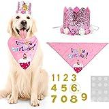 WOVTE Pink Flower Crown Dog Birthday Hat Bandana Cute Cat and Dog Headdress Hat Cat and Dog Celebration Birthday Decoration,