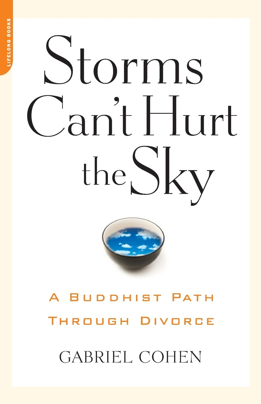 Download Storms Can't Hurt the Sky: A Buddhist Path Through Divorce pdf