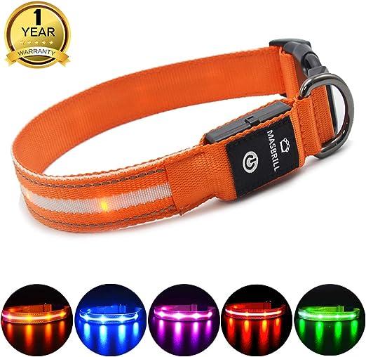 MASBRILL Collar de Perro Luz LED, 3 Modos Collar Perro Luminoso ...