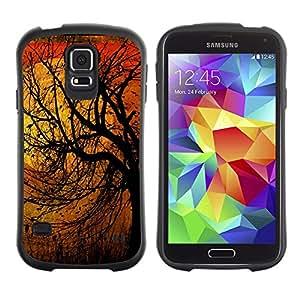 LASTONE PHONE CASE / Suave Silicona Caso Carcasa de Caucho Funda para Samsung Galaxy S5 SM-G900 / Nature Birds Spring Winter Autumn