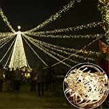 GESIMEI 100M 500LED Flashing Clear Cable String Light with Low Voltage Indoor/Outdoor Waterproof Copper Wire Fairy Lighting for Christmas New Year Celebration Party Tree Garden Patio (WarmWhite)