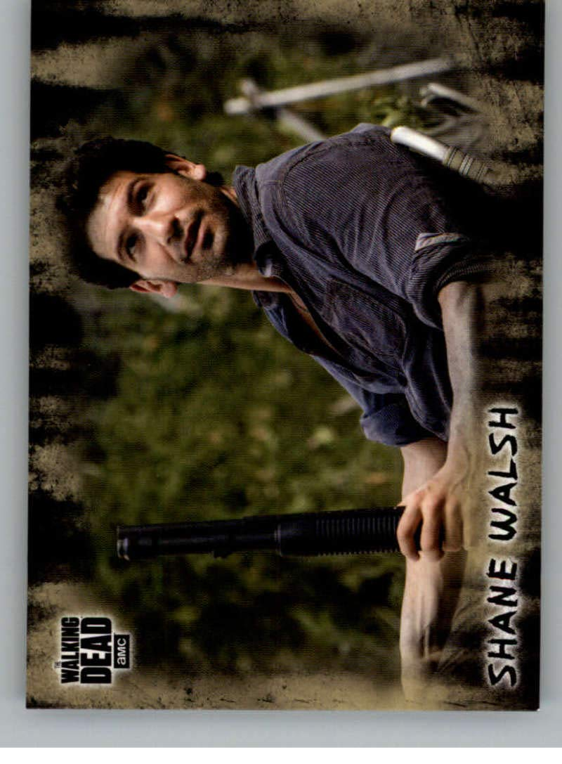 2018 Topps Walking Dead Hunters and the Hunted NonSport #29 Shane Walsh Official Trading Card
