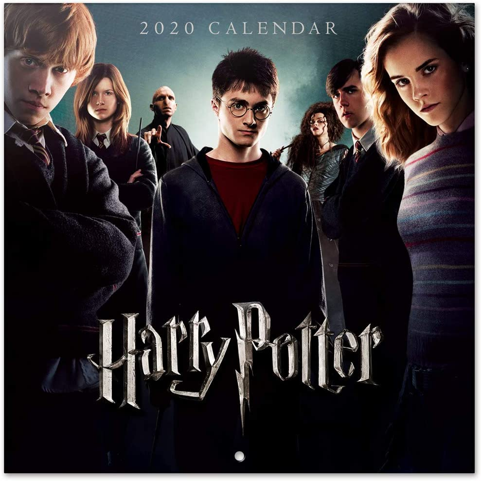 Erik, Calendario de Pared 2020 Harry Potter, Incluye Póster de Regalo, 30 x 30 cm