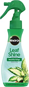 Miracle-Gro Leaf Shine, 8-Ounce (6 Pack)