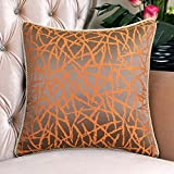 Modern simple style pillow Feather silk cushions pillowcase for sofa and bed -A 60x60cm(24x24inch)VersionB