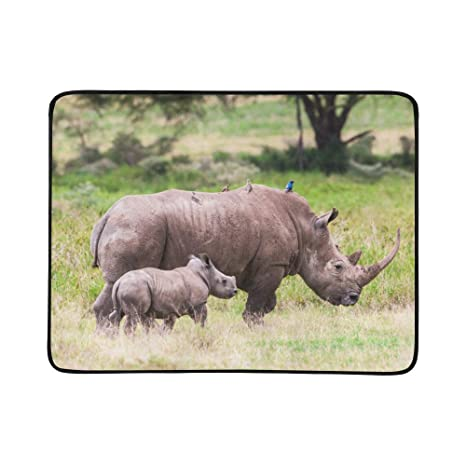 WYYWCY Una Madre Rinoceronte Negra y un patrón de ...