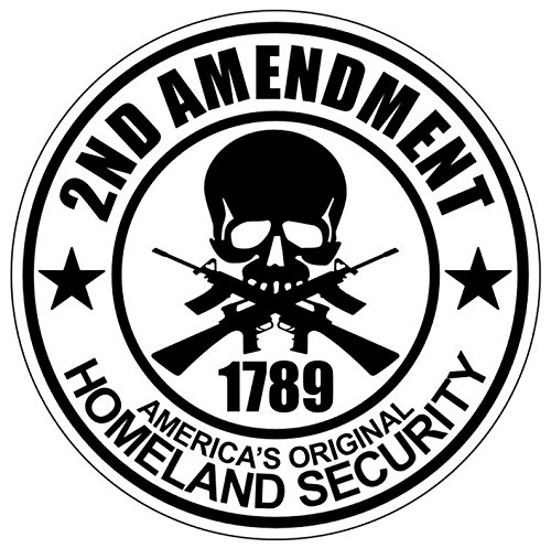1 Pc 2nd Amendment 1789 America's Original Homeland Security Window Stickers Luggage Hoverboard Home Wall Funny Art Graphics Windows Sticker Signs Decor First Rate Unique Size 2