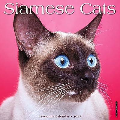 2017 Siamese Cats Wall Calendar