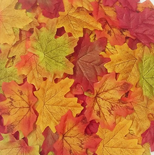 Senswalan Artificial Maple Leaves,500 pcs 10 Color Mixed Rich Fall Colored Leaves for Weddings Decorations or Christmas Party