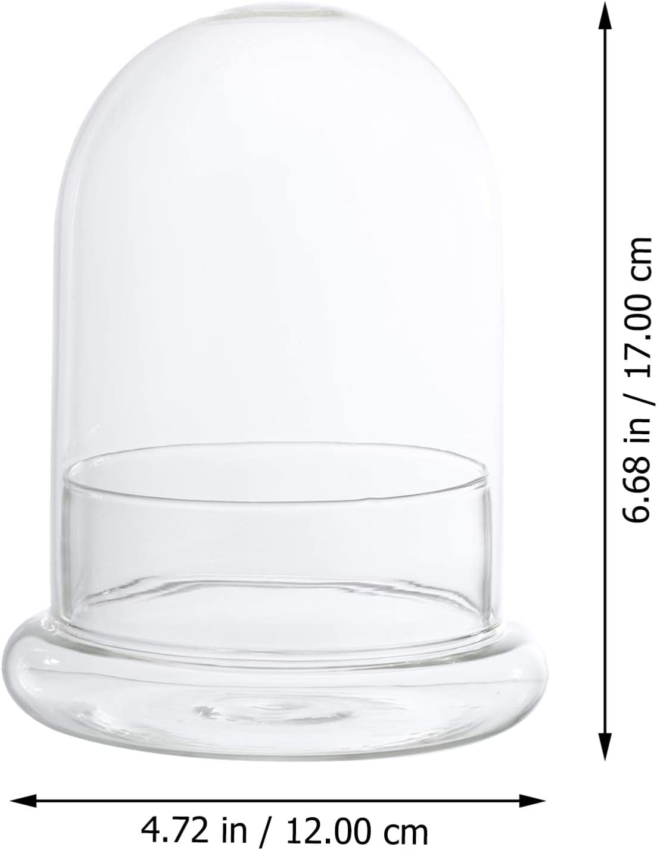 YARNOW Tarro de C/úpula de Campana de Cristal con Base de Terrario Cubierta Decorativa Vitrina